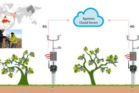 La tecnología IoT de Libelium permite el control predictivo de viñedos en la bodega Pago Aylés.